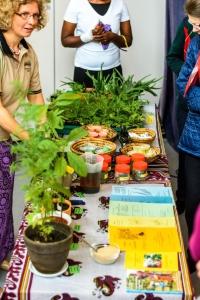 Amuka-Day 2017 - Heilpflanzen